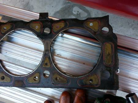Head Gasket looked Good